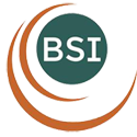 Balance Systems Innovations Logo