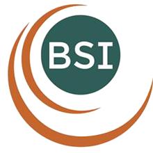 Balance Systems Innovations Ltd Logo